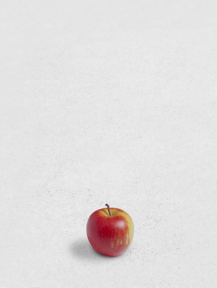 still.life. (apple) | UGO RONDINONE