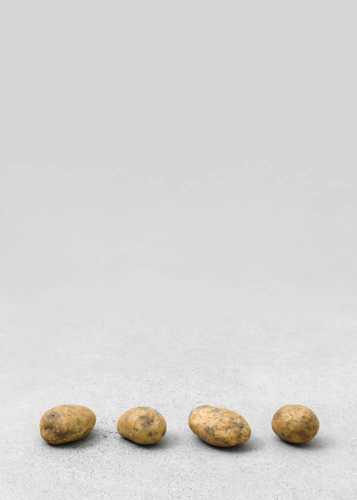 still.life. (four big potatoes in a line) | UGO RONDINONE