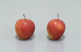still.life. (two apples) | UGO RONDINONE