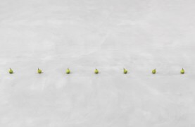 still.life. (seven pears in a line) | UGO RONDINONE