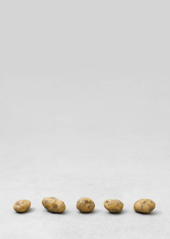 still.life. (five small potatoes in a line) | UGO RONDINONE