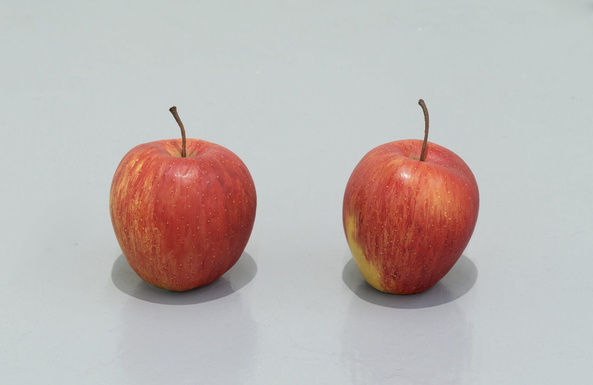 still.life. (two apples)   UGO RONDINONE