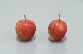 still.life. (two apples) | UGO RONDINONE