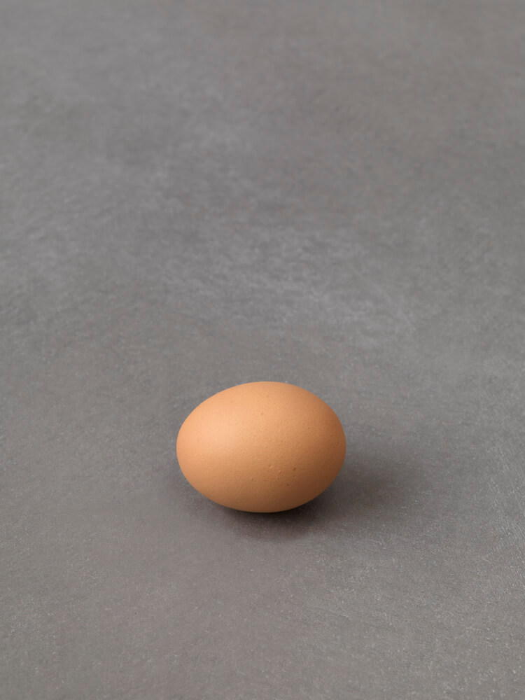 still.life. (one egg) | UGO RONDINONE