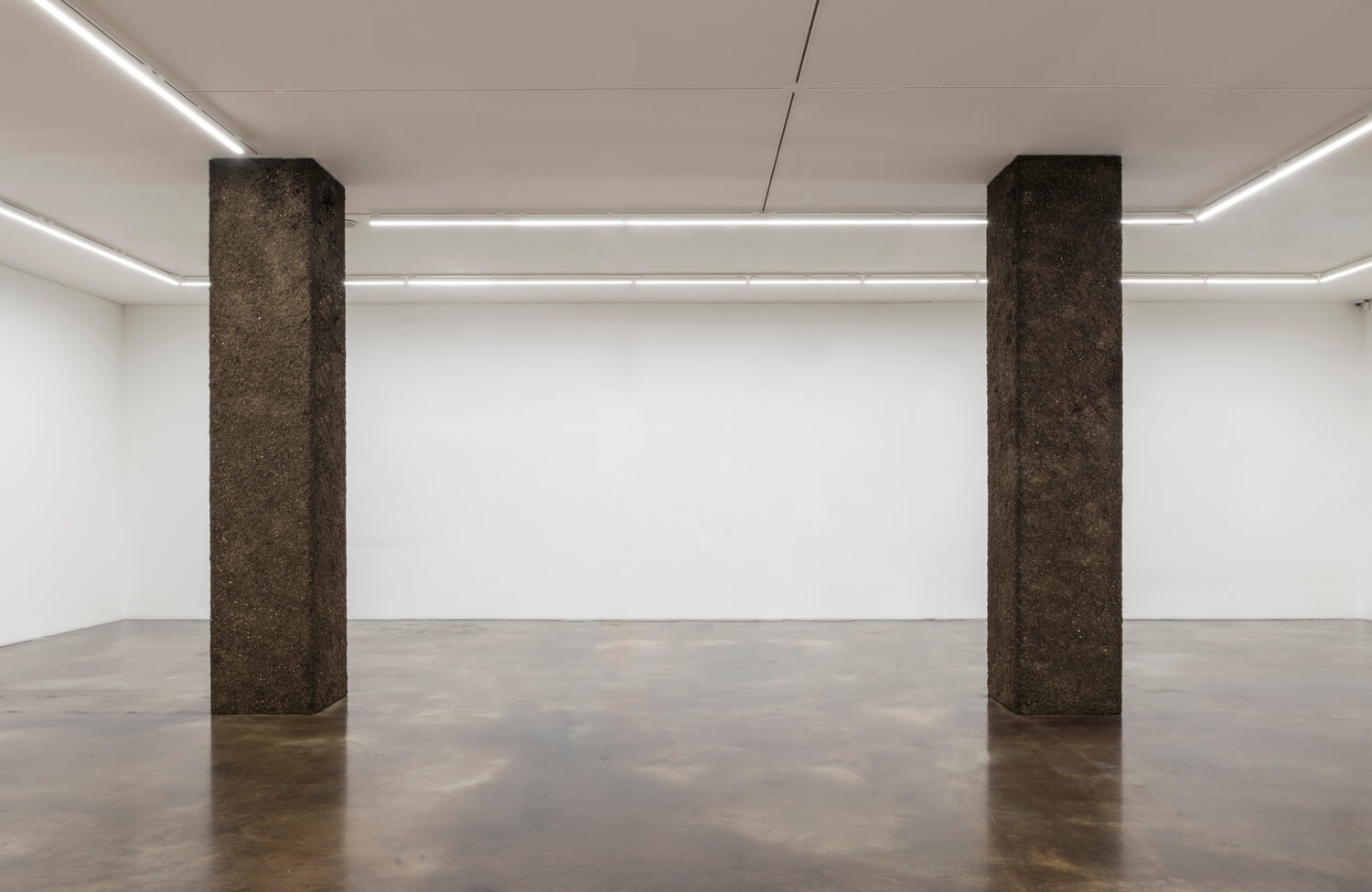 two standing landscapes | UGO RONDINONE